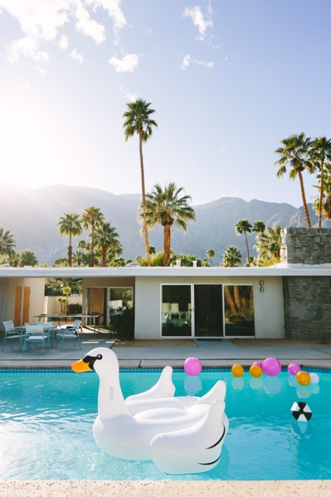 huge-blow-up-swan-for-pool