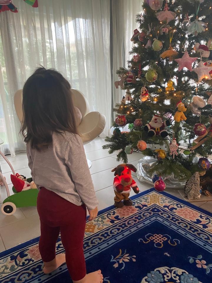 Χριστουγεννιατικο δεντρο… αλλιΩς🎄